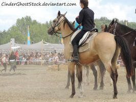 Hungarian Festival Stock 072 by CinderGhostStock
