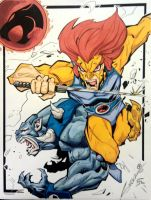 ThunderCats Marker Colors by ogreboy21
