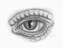 Lizard's Eye by SaviourMachine