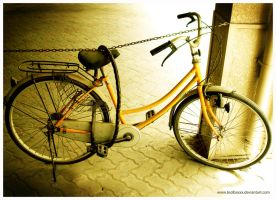 old bicycle by toolboxxx