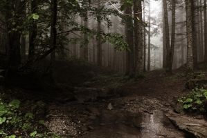Italian Forest 4 by Adres89