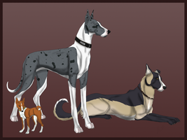 Dogs of Rhed Moon Stables by samuRAI-same