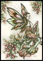 Pomegranate Faery by orafaerygirl