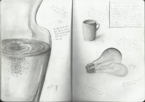 Still Life Sketches by Nyroxs