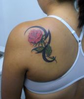 Rose re-done by PainlessJames