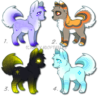 Adorable Canine Adoptables! Just 20pts each! by DailyAdoptables