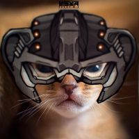 baby Lion Helghast by easycheuvreuille