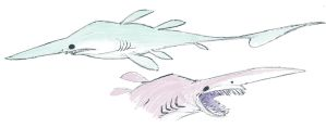 Goblin Sharks by okavango
