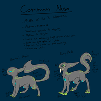 Common Nuso *Info About Designs In Descrip!* by guIIs