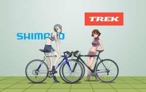 Bicycle Models by AuraHACK