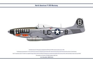 Mustang USAAF 77th FS 1 by WS-Clave