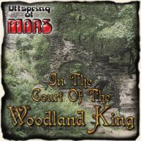 In The Court Of The Woodland King Cover by mac-chipsie