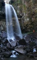 Melincourt Waterfalls by nectar666