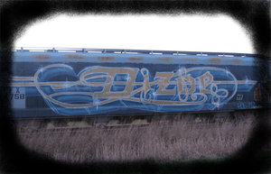 Train of many Graffitis by Sylverkitti