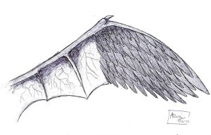 Amalgamation of two wings by Nagabonar-an