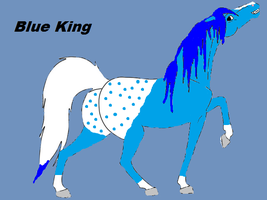 Blue King: Ref Sheet by Mermaid-Girl-13