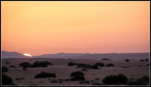 As The Sun is Setting ....in Sahara by Arawn-Photography