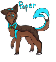 Paper by AnamayCat