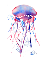 Jellyfish #1 by brothersdude