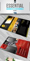 RW Business Flyers Vol 7 by Reclameworks