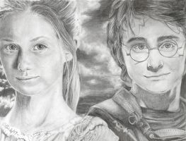 Ginny and Harry by maxwellsilverhammer