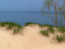 Dune Stock 10 by darchiel