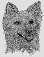 Pen and ink dog by darkgazer622