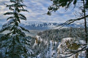 Hospital Creek Canyon Winter by skip2000