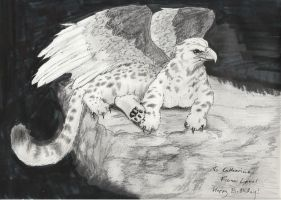 Gryphon by 626elemental