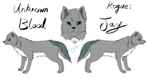 Unknown Blood - Jay Reference by fluffylovey