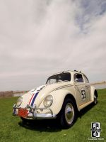 Herbie The Love Bug by Swanee3