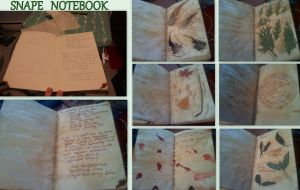 Snape Notebook II by WTF-RedVira