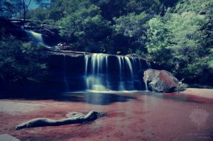 Wentworth Falls .I by ThatScalieThing
