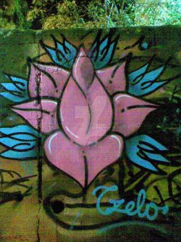 Lotus on wall by Tzelo
