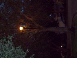lamp post at night by lucybianchi