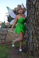 Tinker Bell : 13 by Lil-Kute-Dream