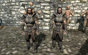 Farkas 'n Vilkas in Steel Armour by Mediziner