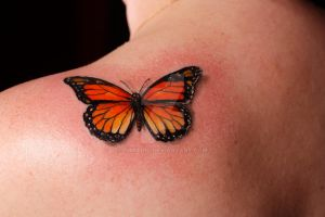 Monarch Butterfly by foxanic