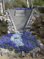 Cotter Dam Floriade by Jessawary