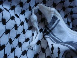 Black and White by Free-Palestine
