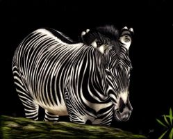 Striped Elegance by shonechacko