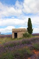 cabanon by Flore-stock