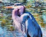 Great Monet Heron by TheLoveTrain