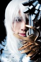 Griffith - Beneath the Veneer by AmenoKitarou