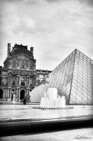 Monocrome Louvre by Elenihrivesse