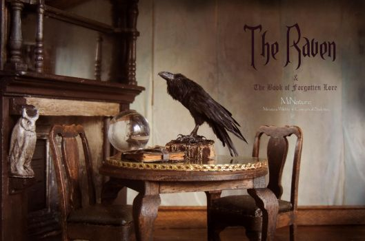 The Raven and The Book of Forgotten Lore by AnyaStone