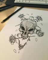 skull roses by Anny-D