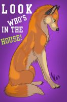 In Da House by Vosify