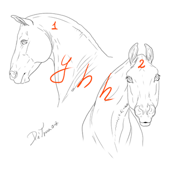 YHH horses Heads closed by Esa82