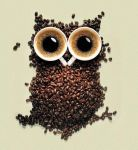 Coffee Owl.. by Manso0n